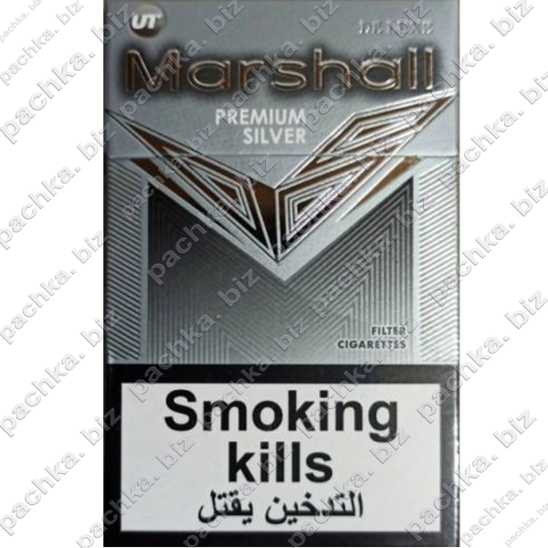 Marshall Silver DUTY-FREE Turbo - фото 5